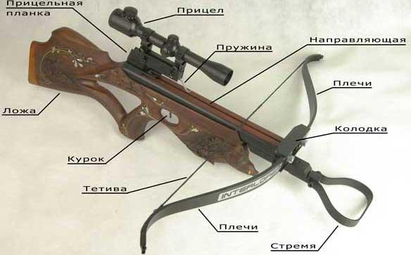 Арбалеты снабжены оптическими, диоптрическими или открытыми прицелами.  Пневматическое оружие.